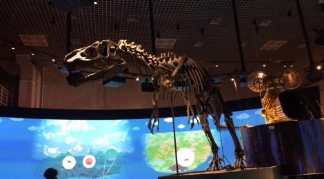 東京の博物館*国立科学博物館に行ってきた